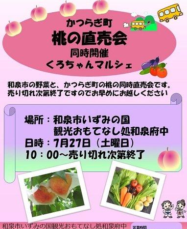 2019年7月27日(土)かつらぎ町